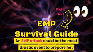 emp survival