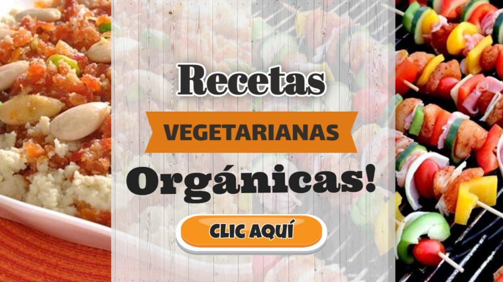 Recetas vegetarianas orgánicas
